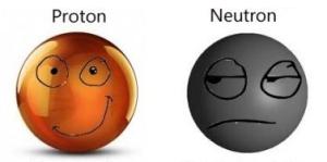 La fuerza nuclear fuerte que mantiene unidos a los protones y neutrones actúa sobre las partículas que los componen, los quarks. La interacción entre quarks se realiza a través de las partículas llamadas gluones.