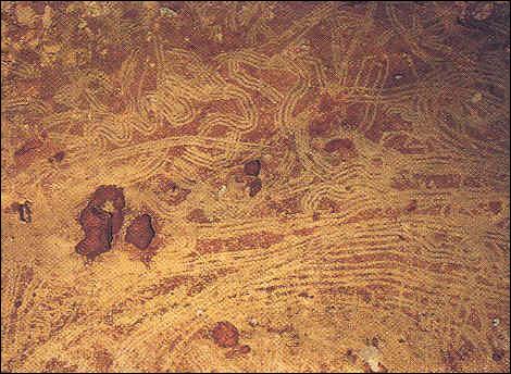 """Cromañón: """"Macaroni"""" puede ser la representación más temprana de una aurora (30.000 A.C.)"""